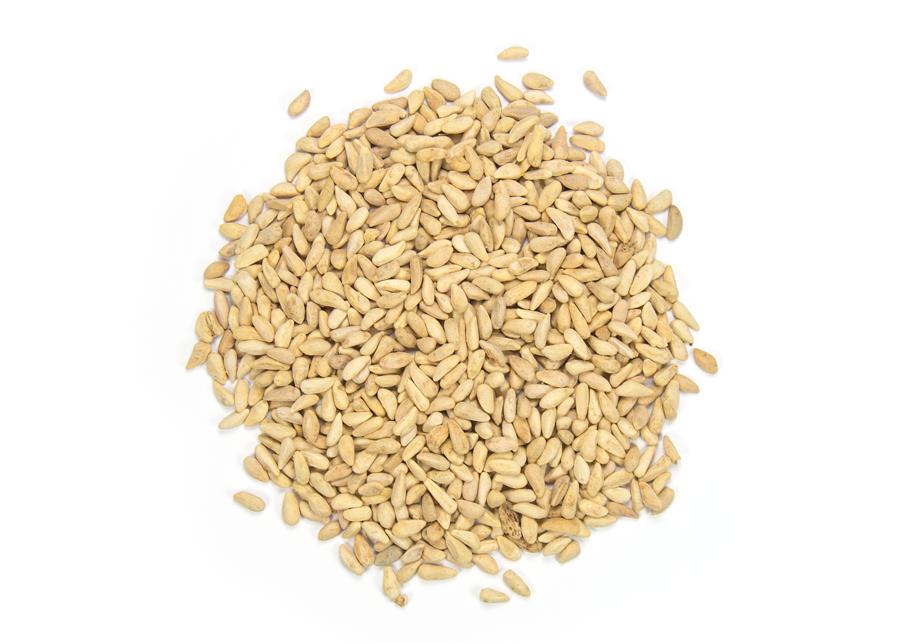 Semillas Complementos alimenticios y Omega 5