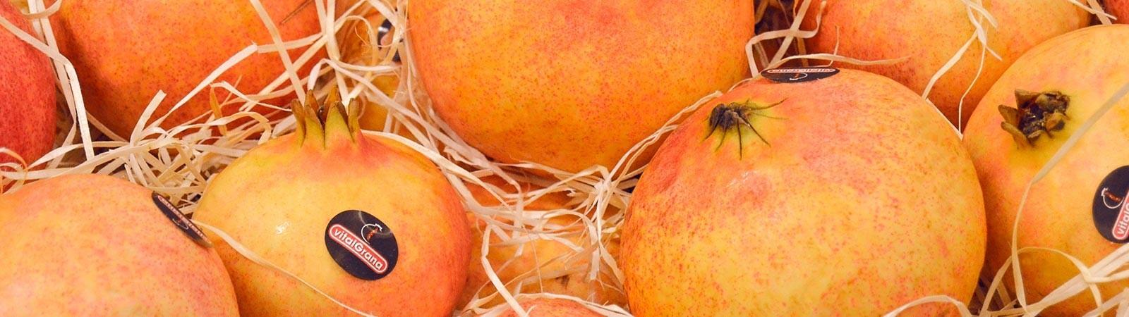 Productos de Granada Gourmet Online - Vitalgrana